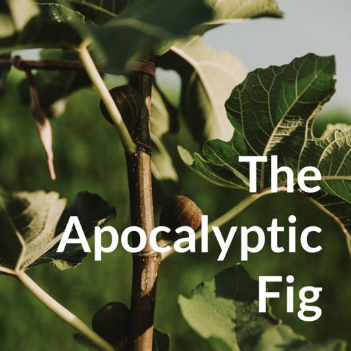Cover art for podcast The Apocalyptic Fig
