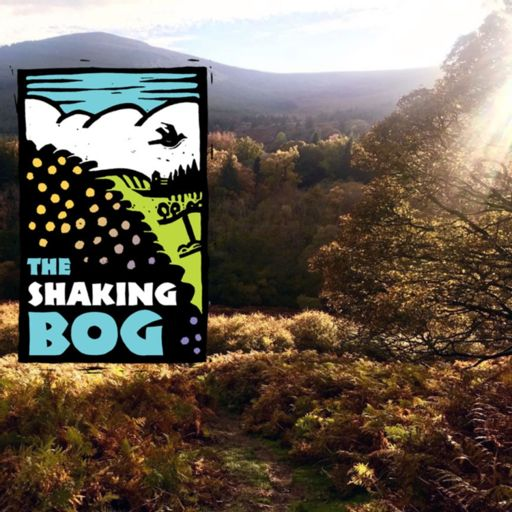 Cover art for podcast The Shaking Bog Podcast