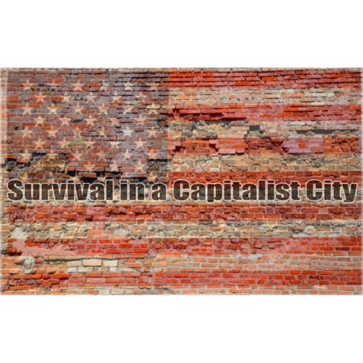 Cover art for podcast Survival in a Capitalist City