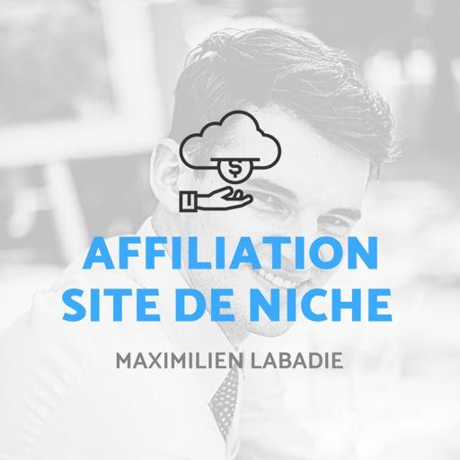 Cover art for podcast Affiliation & Site de Niche
