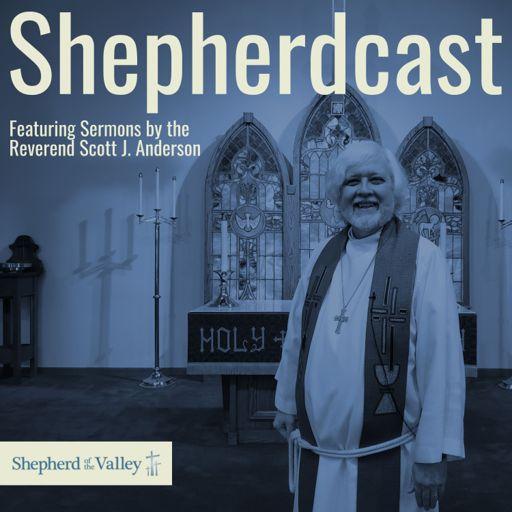 Cover art for podcast The Shepherdcast