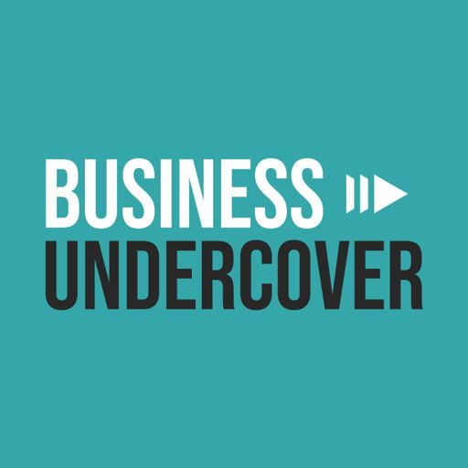 Cover art for podcast Business Undercover