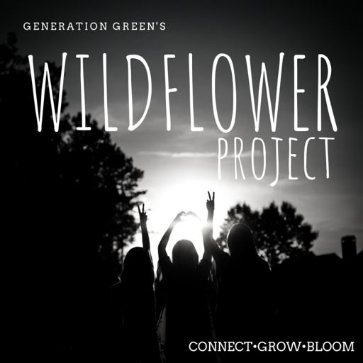 Cover art for podcast Wildflower Project