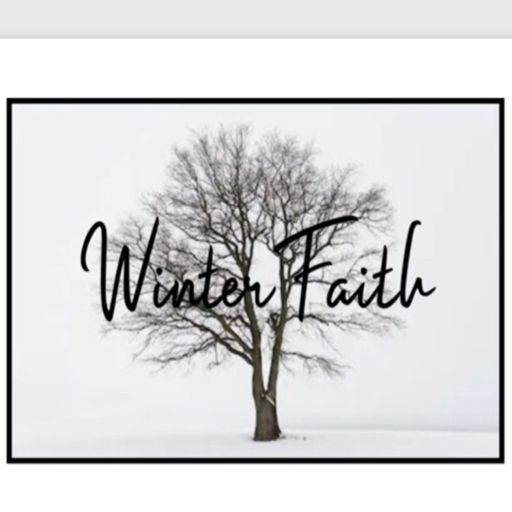 Cover art for podcast The Winter Faith Podcast