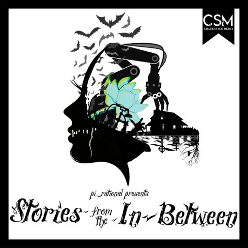 Cover art for podcast Stories From The In Between