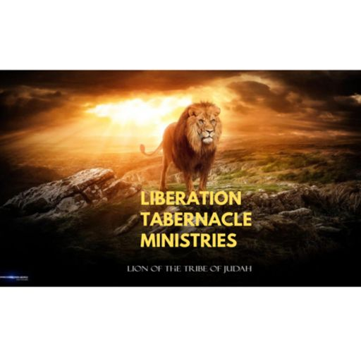 Lions Vibes Radio Presents - Real Talk Monday from Culture Freedom