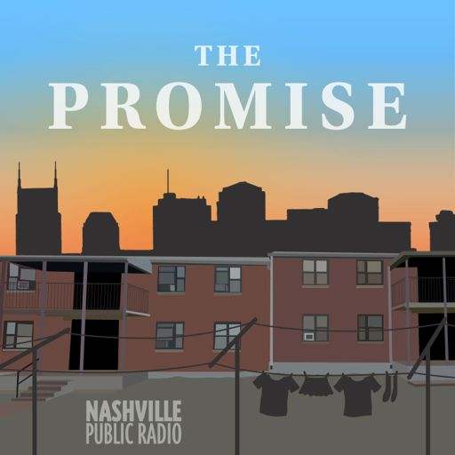 Cover art for podcast The Promise