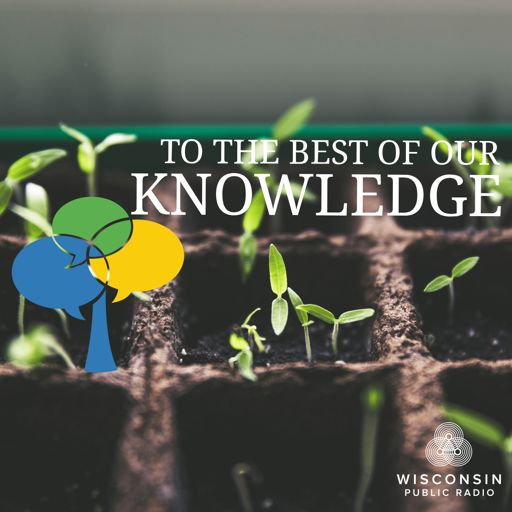are we born with knowledge