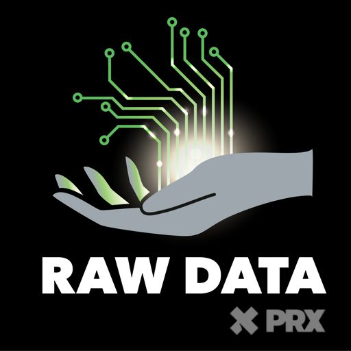Raw Data album art