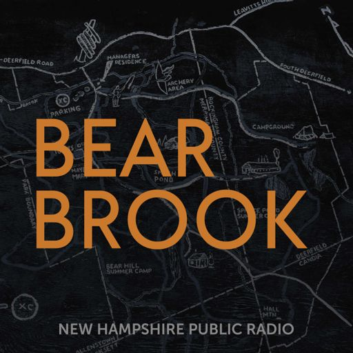 Cover art for podcast Bear Brook