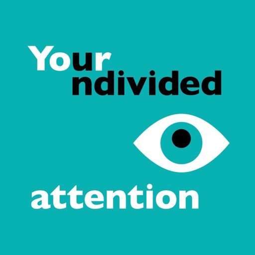 Cover art for podcast Your Undivided Attention