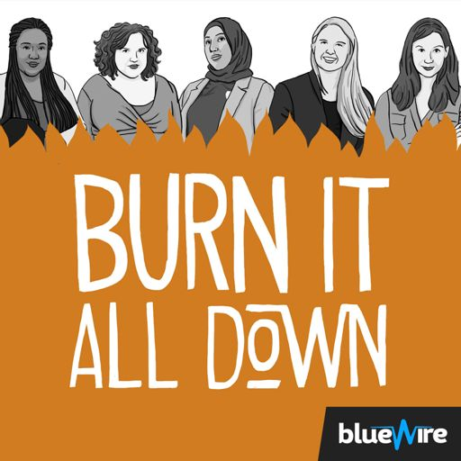 Cover art for podcast Burn It All Down