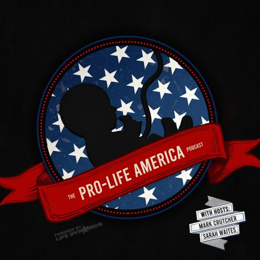 Cover art for podcast Pro-Life America