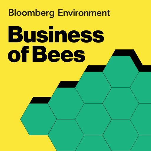 Cover art for podcast Business of Bees