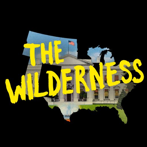 Cover art for podcast The Wilderness