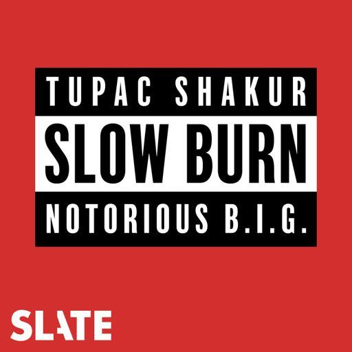 Cover art for podcast Slow Burn