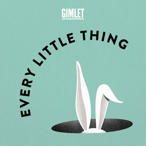 Cover art for podcast Every Little Thing