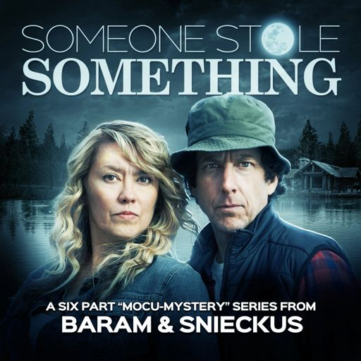 Cover art for podcast Someone Stole Something