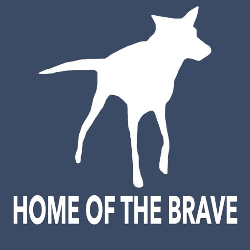 Cover art for podcast Home of the Brave