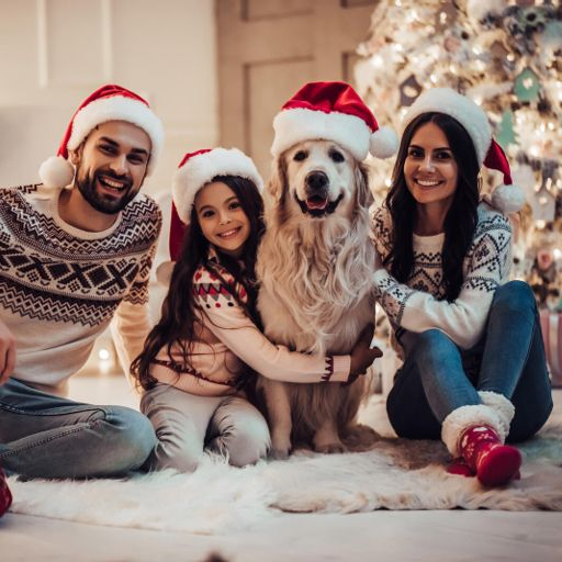 e7bac6715539 How old is too old to be in the Christmas photo  from The Anna ...