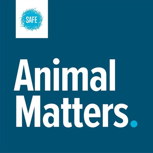 Cover art for podcast Animal Matters