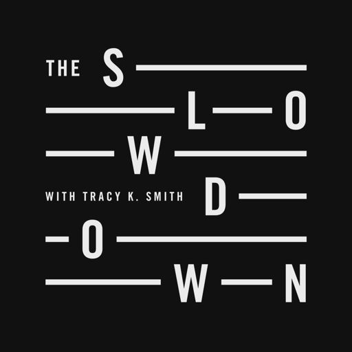 Cover art for podcast The Slowdown