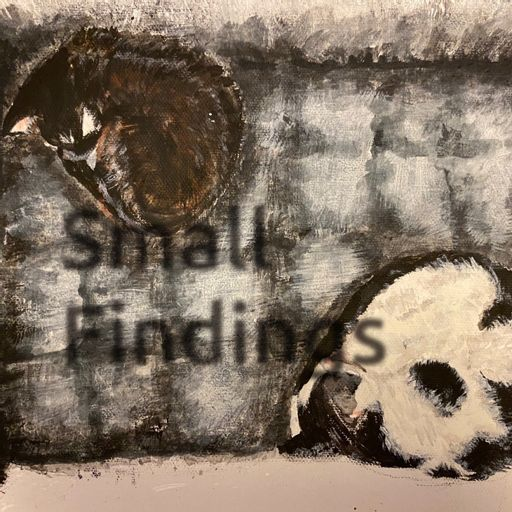 Cover art for podcast Small Findings