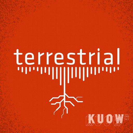 Cover art for podcast terrestrial
