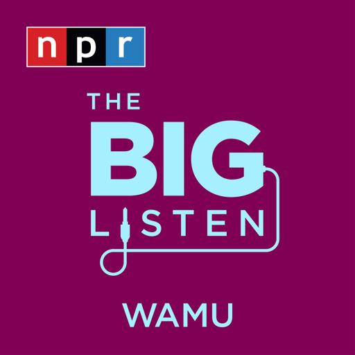 Cover art for podcast The Big Listen