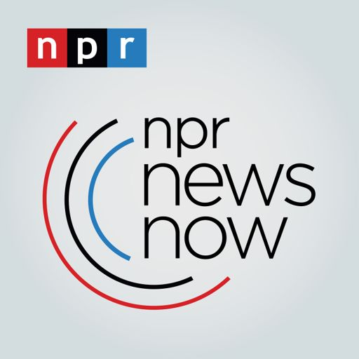 Cover art for podcast NPR News Now