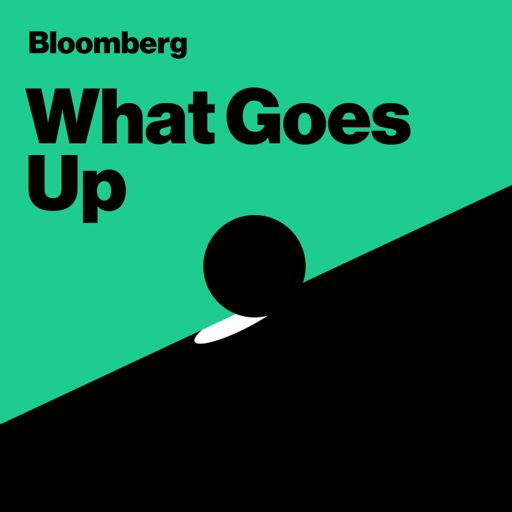 Cover art for podcast What Goes Up