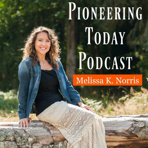 Cover art for podcast Pioneering Today with Melissa K. Norris