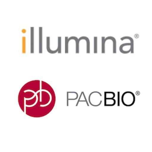 Keith Robison and Shawn Baker on Illumina Buyout of PacBio
