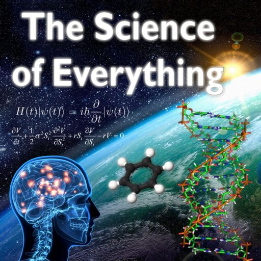 Cover art for podcast The Science of Everything Podcast