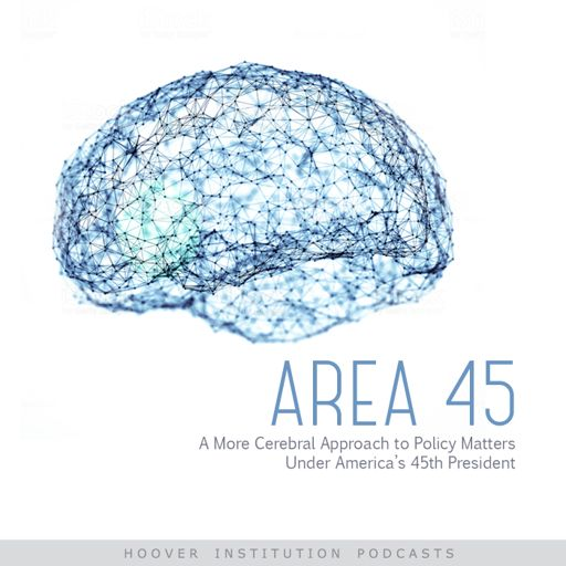 Cover art for podcast Area 45