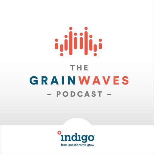 Cover art for podcast GrainWaves