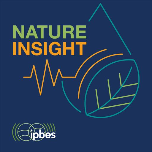 Cover art for podcast Nature Insight: Speed Dating with the Future