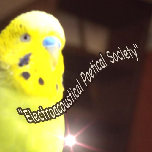 Cover art for podcast Electroacoustical Poetical Society