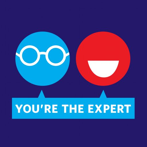 Cover art for podcast You're the Expert