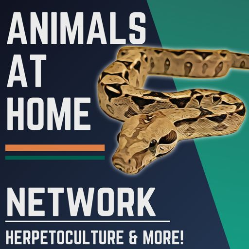 Cover art for podcast The Animals at Home Network