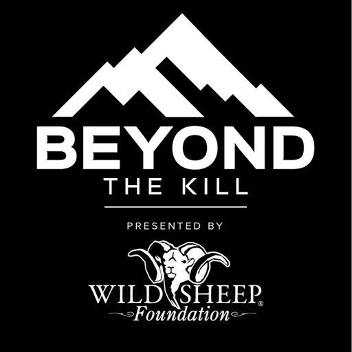 Cover art for podcast Beyond the Kill
