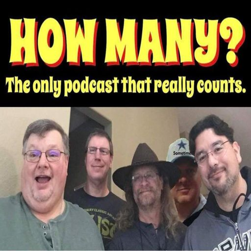 Cover art for podcast How Many Podcast