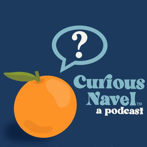 Cover art for podcast Curious Navel