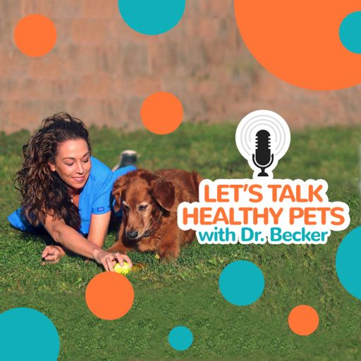 Cover art for podcast Let's Talk Healthy Pets with Dr. Becker