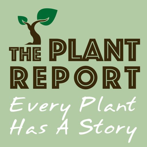 Cover art for podcast The Plant Report- Every Plant Has A Story