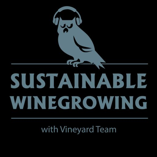 Cover art for podcast Sustainable Winegrowing with Vineyard Team