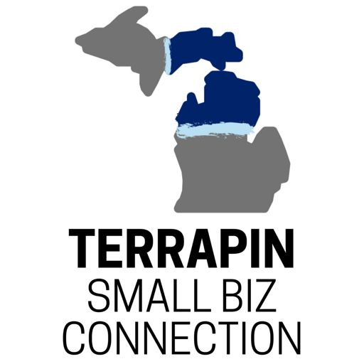 Cover art for podcast Terrapin Small Biz Connection