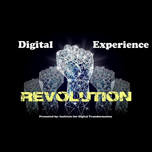 Cover art for podcast Digital Experience Revolution