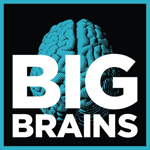 Cover art for podcast Big Brains