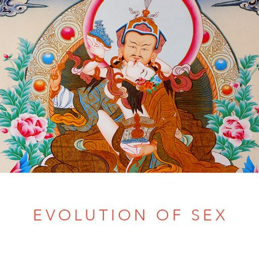 Evolution of Sex 05 Return to Paradise from Gnostic Teachings